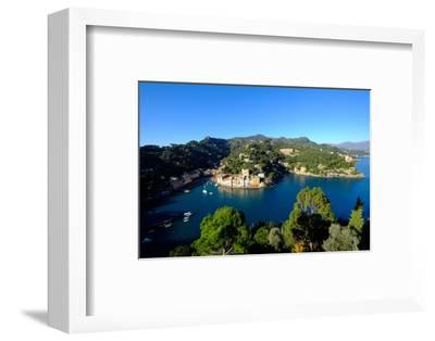 The Bay of Portofino Seen from Castello Brown, Genova (Genoa), Liguria, Italy, Europe-Carlo Morucchio-Framed Photographic Print