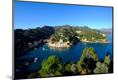 The Bay of Portofino Seen from Castello Brown, Genova (Genoa), Liguria, Italy, Europe-Carlo Morucchio-Mounted Photographic Print