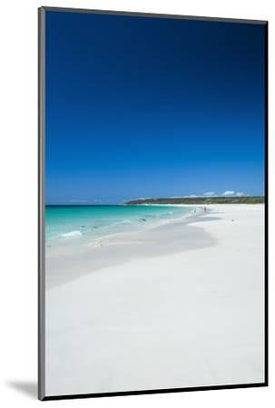 White Sand Beach and Turquoise Waters-Michael-Mounted Photographic Print