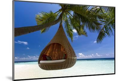 Sofa Hanging on a Tree on the Beach, Maldives, Indian Ocean-Sakis Papadopoulos-Mounted Photographic Print