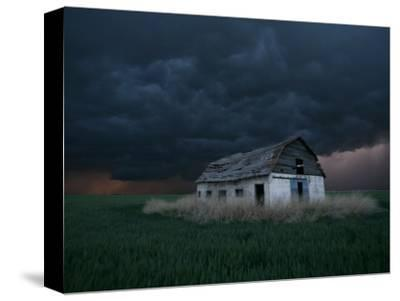 Old Barn Stands in a Wheat Field as a Thunderstorm Passes in the Distance Near Ogallah, Kansas--Stretched Canvas Print