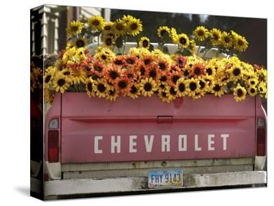 Chevrolet-Amy Sancetta-Stretched Canvas Print
