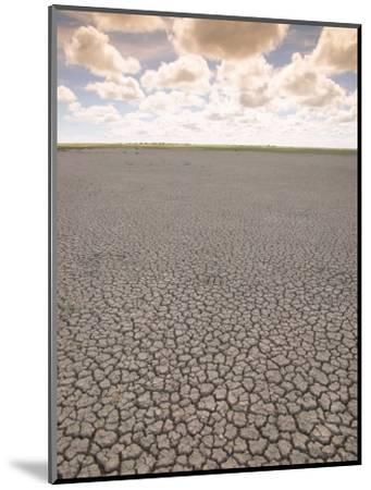 Parched Earth, Etosha National Park, Namibia-Walter Bibikow-Mounted Photographic Print