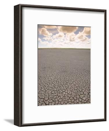 Parched Earth, Etosha National Park, Namibia-Walter Bibikow-Framed Photographic Print