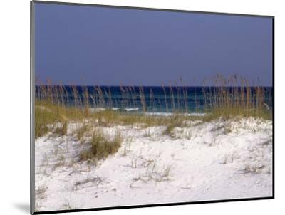Beach on Gulf of Mexico, Al-Sherwood Hoffman-Mounted Photographic Print