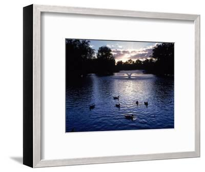 Fountain & Ducks in Water at Sunset-Howard Sokol-Framed Photographic Print