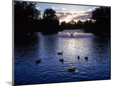 Fountain & Ducks in Water at Sunset-Howard Sokol-Mounted Photographic Print