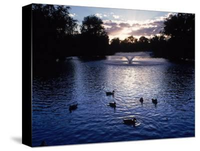 Fountain & Ducks in Water at Sunset-Howard Sokol-Stretched Canvas Print