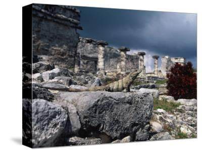 Mayan Ruins, Tulum, Mexico-Angelo Cavalli-Stretched Canvas Print