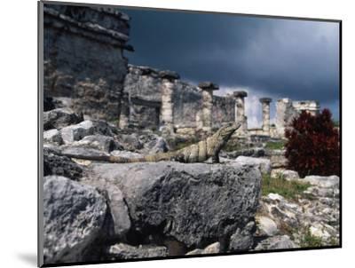 Mayan Ruins, Tulum, Mexico-Angelo Cavalli-Mounted Photographic Print