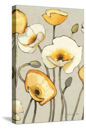 Jaune Gris III Crop-Shirley Novak-Stretched Canvas Print