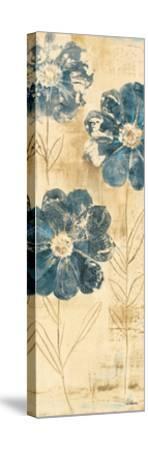 Daisy Trio II-Albena Hristova-Stretched Canvas Print