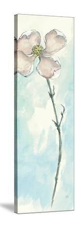 Solitary Dogwood III-Chris Paschke-Stretched Canvas Print