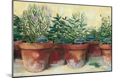 Potted Herbs I-Carol Rowan-Mounted Art Print