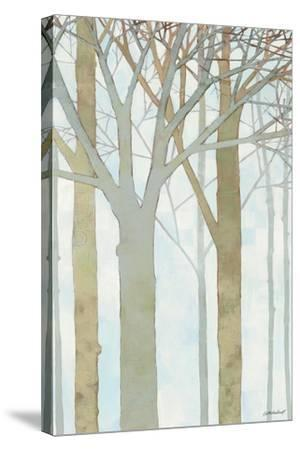 In Springtime III-Kathrine Lovell-Stretched Canvas Print