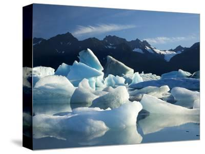 Icebergs Floating in Alsek Lake. Glacier Bay National Park, Ak.-Justin Bailie-Stretched Canvas Print