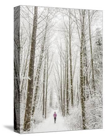Winter Trail Running-Steven Gnam-Stretched Canvas Print