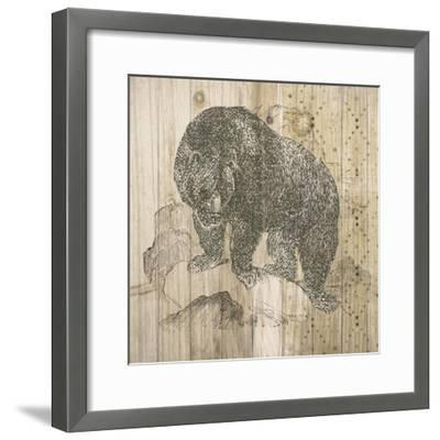 Natural History Lodge IV-Elyse DeNeige-Framed Art Print