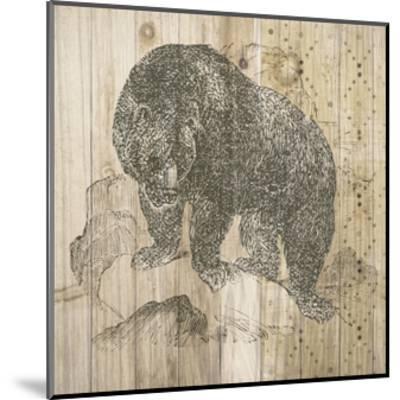 Natural History Lodge IV-Elyse DeNeige-Mounted Art Print
