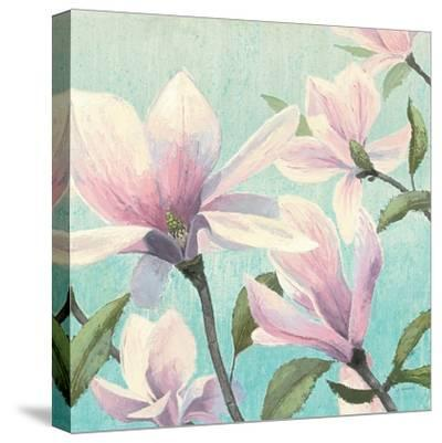 Southern Blossoms I Square-James Wiens-Stretched Canvas Print