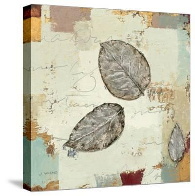 Silver Leaves IV-James Wiens-Stretched Canvas Print