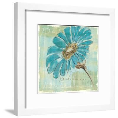 Spa Daisies II-Chris Paschke-Framed Art Print