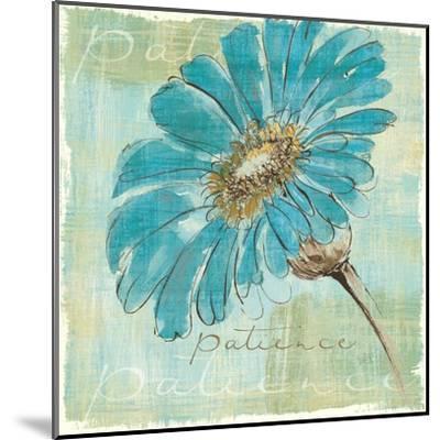 Spa Daisies II-Chris Paschke-Mounted Art Print