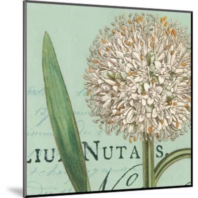 Botanique Bleu II-Hugo Wild-Mounted Art Print