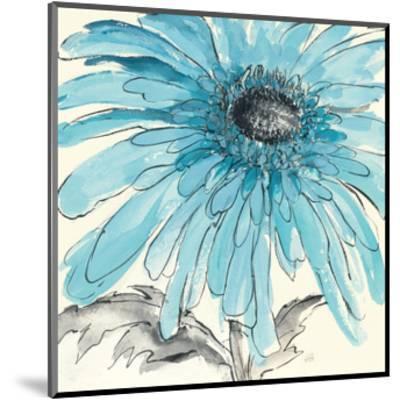 Gerbera Blue III-Chris Paschke-Mounted Art Print