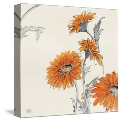 Orange Gerbera I-Chris Paschke-Stretched Canvas Print