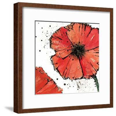 Not a California Poppy on White IV-Chris Paschke-Framed Art Print
