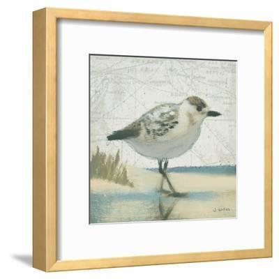 Beach Bird I-James Wiens-Framed Art Print