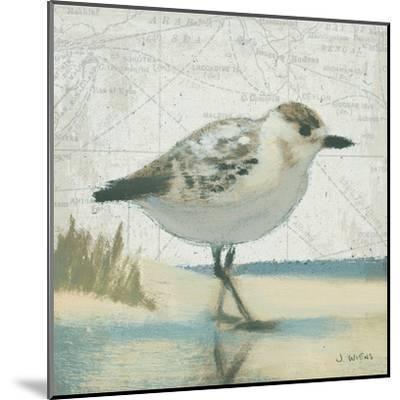 Beach Bird I-James Wiens-Mounted Art Print
