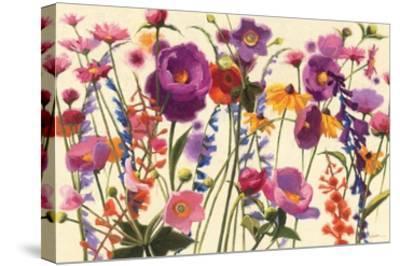 Couleur Printemps I-Shirley Novak-Stretched Canvas Print
