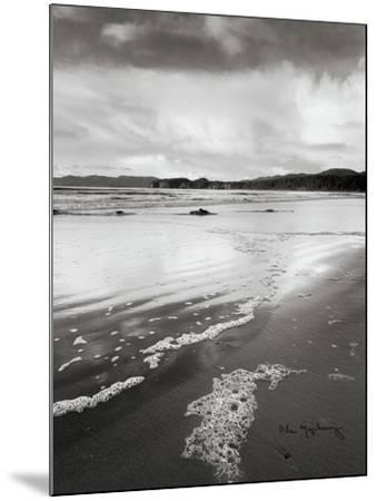 Shi Shi Beach-Alan Majchrowicz-Mounted Art Print