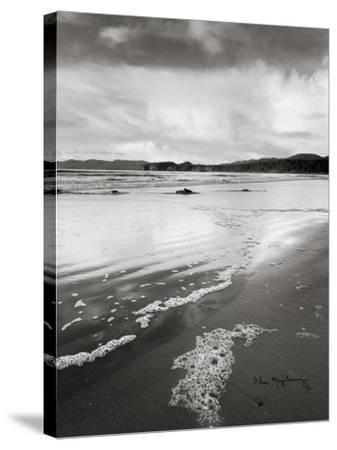 Shi Shi Beach-Alan Majchrowicz-Stretched Canvas Print