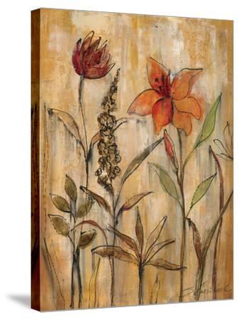 Aquarelle Garden II-Silvia Vassileva-Stretched Canvas Print