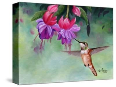 Hummer and Pink Fuchsias-Julie Peterson-Stretched Canvas Print