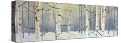 Winter Birch Forest-Julie Peterson-Stretched Canvas Print