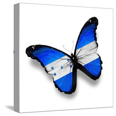 Honduras Flag Butterfly, Isolated On White-suns_luck-Stretched Canvas Print