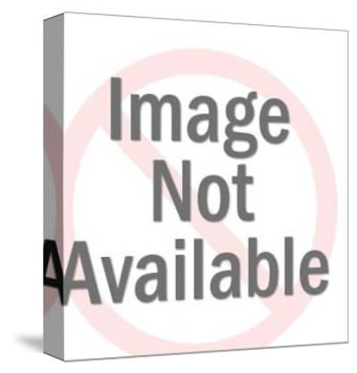 Sad World Man-Pop Ink - CSA Images-Stretched Canvas Print