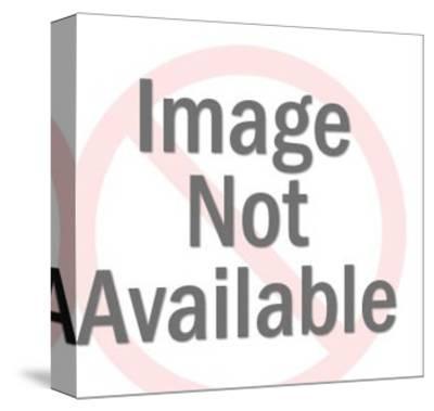 Men's Underwear Briefs-Pop Ink - CSA Images-Stretched Canvas Print