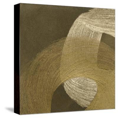 Revolution II-Megan Meagher-Stretched Canvas Print