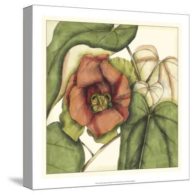 Tropical Blooms and Foliage IV-Jennifer Goldberger-Stretched Canvas Print