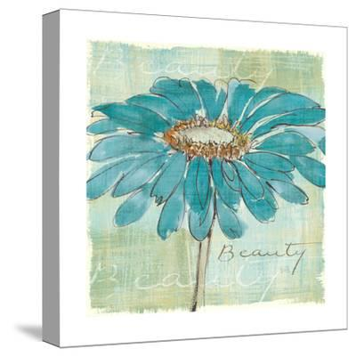 Spa Daisies I-Chris Paschke-Stretched Canvas Print