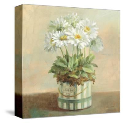 Tres Chic Daisies-Danhui Nai-Stretched Canvas Print