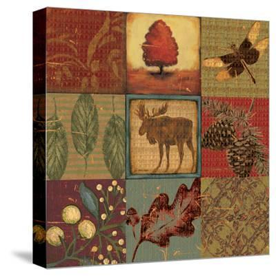 Teton Tapestry II-Jo Moulton-Stretched Canvas Print