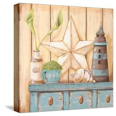 Coastal Cupboard I-Jo Moulton-Stretched Canvas Print