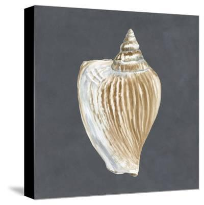 Shell on Slate VI-Megan Meagher-Stretched Canvas Print