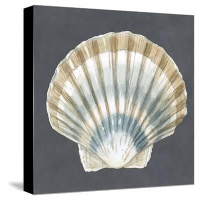 Shell on Slate III-Megan Meagher-Stretched Canvas Print